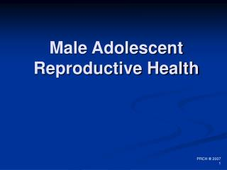 Male Adolescent Reproductive Health