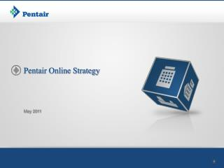 Pentair Online Strategy