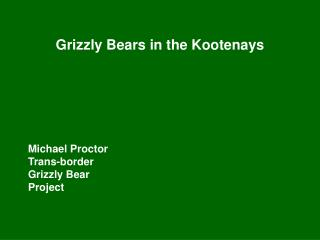 Grizzly Bears in the Kootenays