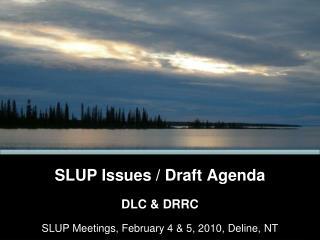 SLUP Issues / Draft Agenda