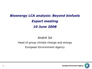 Bioenergy LCA analysis: Beyond biofuels Expert meeting 10 June 2008 Andr é Jol