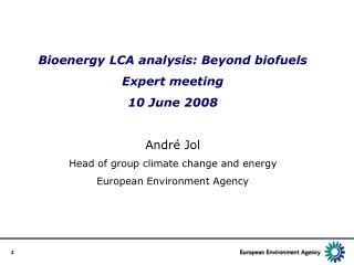 Bioenergy LCA analysis: Beyond biofuels Expert meeting 10 June 2008 Andr é Jol