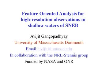 Feature Oriented Analysis for  high-resolution observations in  shallow waters of SNEB
