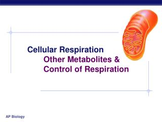 Cellular Respiration 	Other Metabolites &  	Control of Respiration