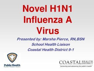 Novel H1N1 Influenza A Virus