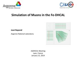Simulation of Muons in the Fe-DHCAL
