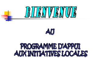 AU  PROGRAMME D'APPUI  AUX INITIATIVES LOCALES