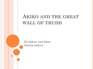 Akiko and  t he great wall of trudd