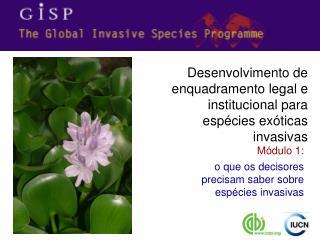 Módulo 1: o que os decisores precisam saber sobre espécies invasivas