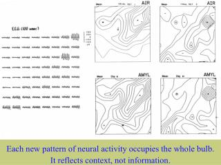 Spatial patterns of EEG