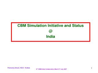 CBM Simulation Initiative and Status @ India