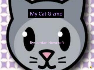 My Cat Gizmo