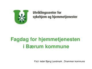 Fagdag for hjemmetjenesten  i B�rum kommune