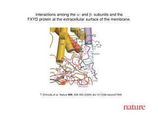 T Shinoda  et al. Nature 459 , 446-450 (2009) doi:10.1038/nature0 7939