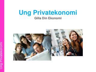 Ung Privatekonomi Gilla Din Ekonomi