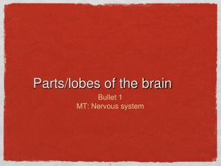 Parts/lobes of the brain
