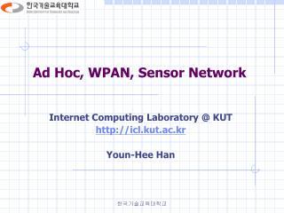 Ad Hoc, WPAN, Sensor Network