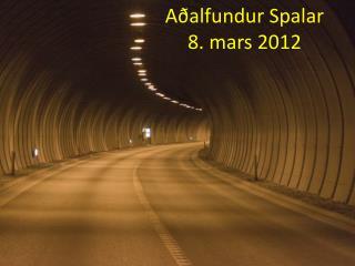 Aðalfundur Spalar 8. mars 2012