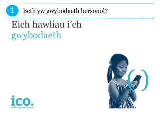 Beth yw gwybodaeth bersonol?