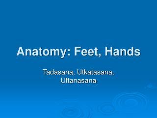 Anatomy: Feet, Hands
