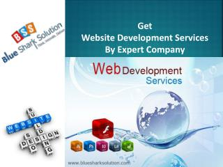 Get website development services by expert company: