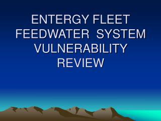ENTERGY FLEET FEEDWATER  SYSTEM VULNERABILITY REVIEW