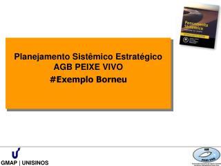 Planejamento Sistêmico Estratégico AGB PEIXE VIVO  #Exemplo  Borneu