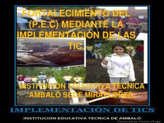 FORTALECIMIENTO DEL ( P.E.C ) MEDIANTE LA IMPLEMENTACIÓN DE LAS TIC.