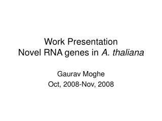 Work Presentation  Novel RNA genes in  A. thaliana