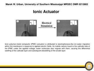 Ionic Actuator