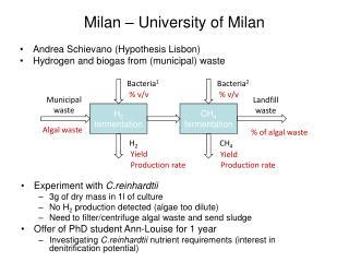 Milan – University of Milan