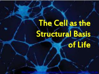 The Cell as the  Structural Basis  of Life