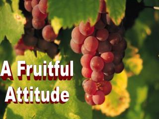 A Fruitful Attitude