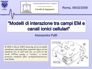 """""""Modelli di interazione tra campi EM e canali ionici cellulari"""""""
