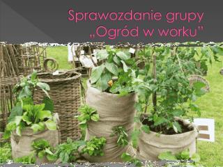 """Sprawozdanie grupy  """"Ogród w worku"""""""