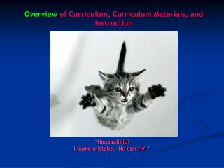 Overview of Curriculum, Curriculum Materials, and Instruction