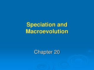 Speciation and Macroevolution