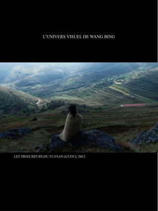 L'UNIVERS VISUEL DE WANG BING
