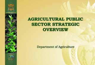 AGRICULTURAL PUBLIC SECTOR STRATEGIC OVERVIEW
