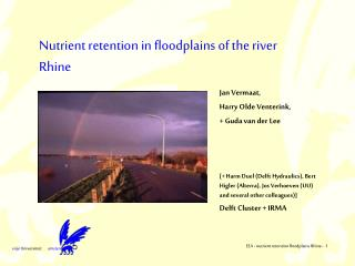 Nutrient retention in floodplains of the river Rhine