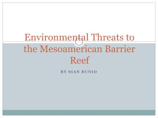 Environmental Threats to the Mesoamerican Barrier Reef