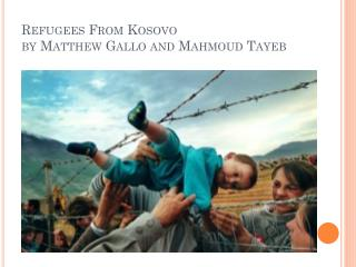 Refugees From Kosovo by Matthew Gallo and Mahmoud  Tayeb