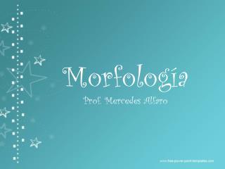 Morfología Prof. Mercedes Alfaro