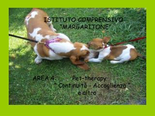 """AREA 4:         Pet–therapy               """" Continuità - Accoglienza """""""
