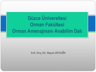 Düzce Üniversitesi Orman Fakültesi Orman Amenajmanı Anabilim Dalı