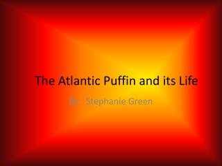 The Atlantic Puffin and its Life