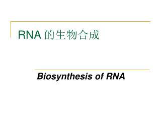 RNA  的生物合成