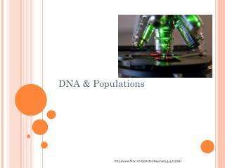 DNA & Populations