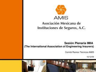 Sesión Plenaria IMIA  (The International Association of Engineering Insurers)
