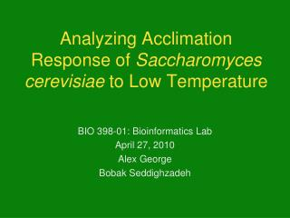 Analyzing Acclimation Response of  Saccharomyces cerevisiae  to Low Temperature